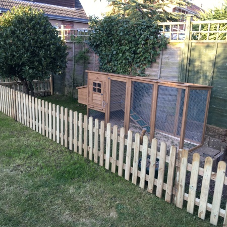 Chicken coop and run picket fence