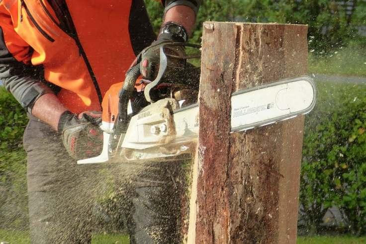 chainsaw cut wood