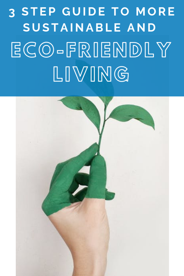 3 step guide to more sustainable and eco-friendly living.png