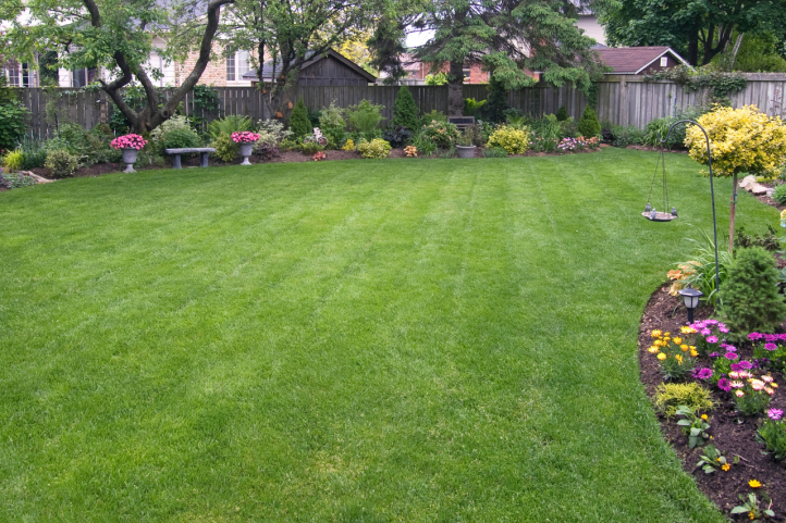 5 things to consider adding to your backyard in 2019 (1).png