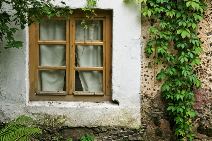 How to recognise the signs of rotting wooden window frames