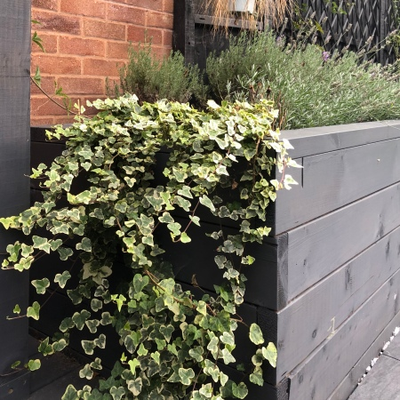 How outdoor planters can transform your home or office